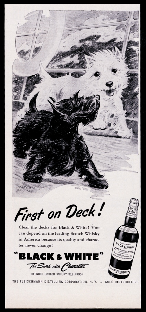 1955 Tricolor Westie Perro Barco Mar Tormenta Arte Black White Scotch Whisky Print Ad Ebay